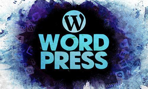Webseite WordPress zum selber ändern
